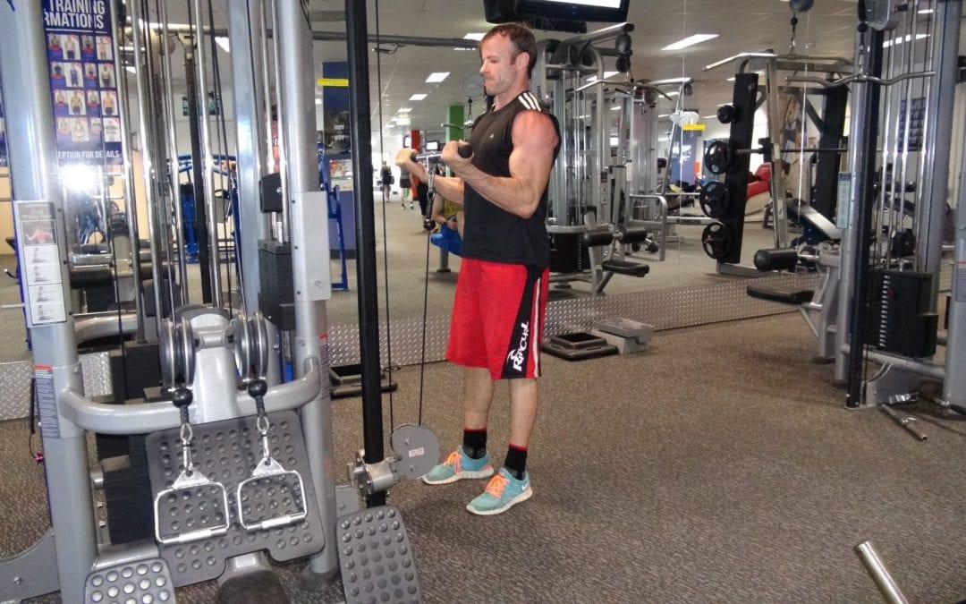 Bicep Curl – Cables