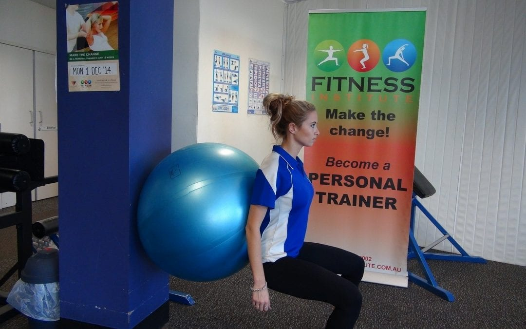 Fitball Squats